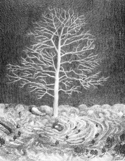 1983 Eugeniusz Józefowski, Bezlistne drzewo a jednak te same, rysunek ołówkiem na papierze akwarelowym, 60 x 60 cm 14