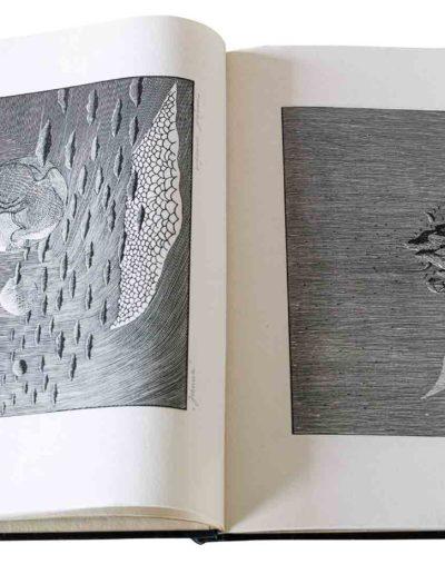 1983 Eugeniusz Józefowski, Milcząca książka, książka szyta po chińsku, linoryty odbite na bibule japońskiej, format 30,5 x 38,5 x 0,8 cm 03