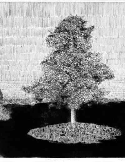 1983 Eugeniusz Józefowski, Niebotyczne drzewo na wyspach, rysunek piórkiem na odbitce suchej igły, format 60 x 42 cm 11