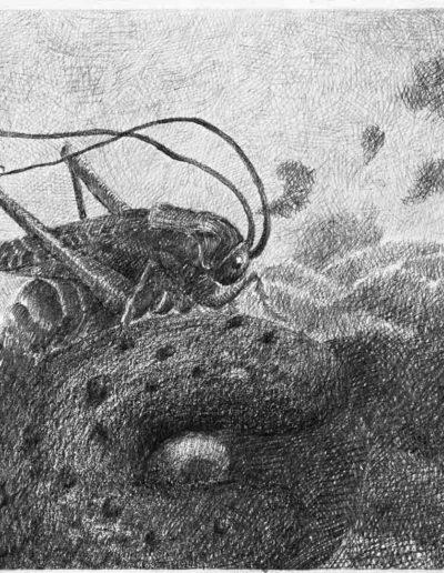 1983 Eugeniusz Józefowski, Smakowitość destrukcji, rysunek ołówkiem na papierze akwarelowym, 24 x 18 cm 06