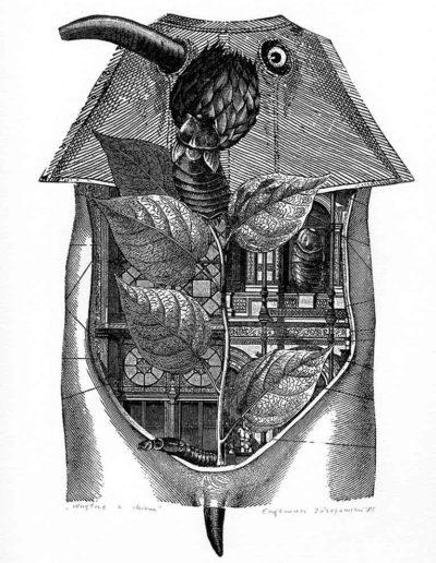 1985 Eugeniusz Józefowski, Wnętrze z okiem, cynkografia, 24 x 17 cm