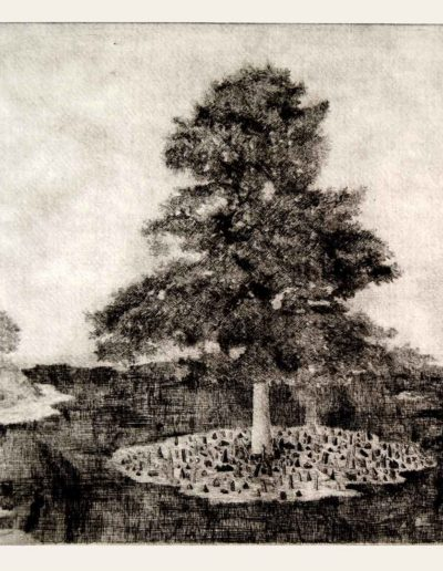 1985 Eugeniusz Józefowski, Wyspy drzew, sucha igła, format