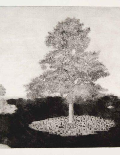 1985 Eugeniusz Józefowski, Wyspy drzew, sucha igła, format a