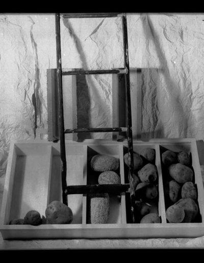 1995 Eugeniusz Józefowski, Ziemniaki i kamienie, Instalacje osobiste aranżowane na Gajowej, fotografia negatwowa 13 x 18 cm 02