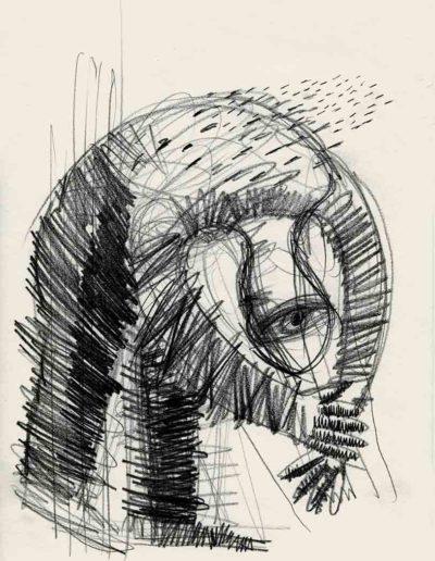 1998 Eugeniusz Józefowski, Oko z tyłu głowy przydaje się wtedy, 30 x 21 cm, rysunek ołówkiem na papierze