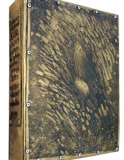 1999 ZBIÓR Kilka ptasich spojrzeń na sprawy pozbawione gracji, lecz wszechobecne, pudełko-etui na strony-matryce dla książki zawierającej strony od 1 do 12, 21 × 27,5 × 5 cm