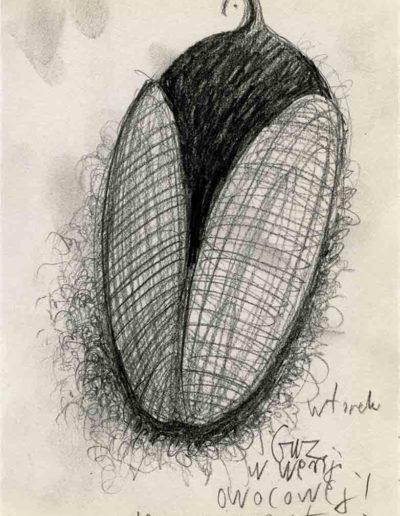 2000 Eugeniusz Józefowski ,Rysunek ze Szkicownika warszawskiego