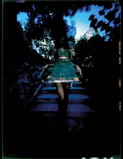 2003 Eugeniusz Józefowski, Dziewczyna w miedzianej sukni, pinhol, negatyw 4 x 5 cala 023