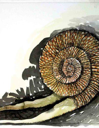 2009 Eugeniusz Józefowski, Amonit monitorowany przez grupę malarzy,rysunek tuszem lawowanym na papierze czerpanym, 42 x 29,5 cm