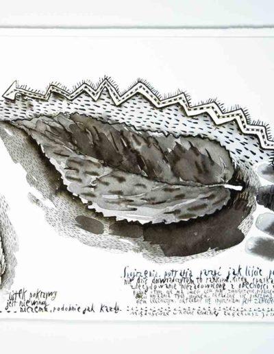 2010_11 Eugeniusz Józefowski, Spojrzenia potrafią parzyć jak liście pokrzywyrysunek tuszem lawowanym na papierze czerpanym, 42 x 29,5 cm (2)