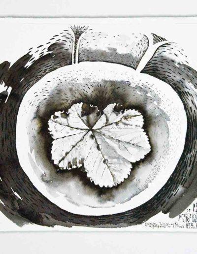 2011 Eugeniusz Józefowski, Nawet jeśli ta roślina nie nazywa się przewrotnik,rysunek tuszem lawowanym na papierze czerpanym, 42 x 29,5 cm